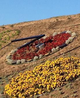 Horloge en fleur rouge et entouré de pierres