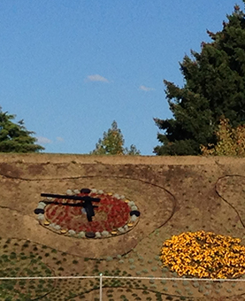 Dune de terre avec une horloge en fleur rouge